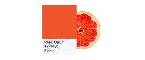 PANTONE-17-1462-Flame