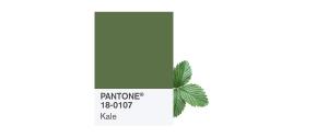 PANTONE-18-0107-Kale